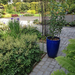 gallery-patios-paths-3